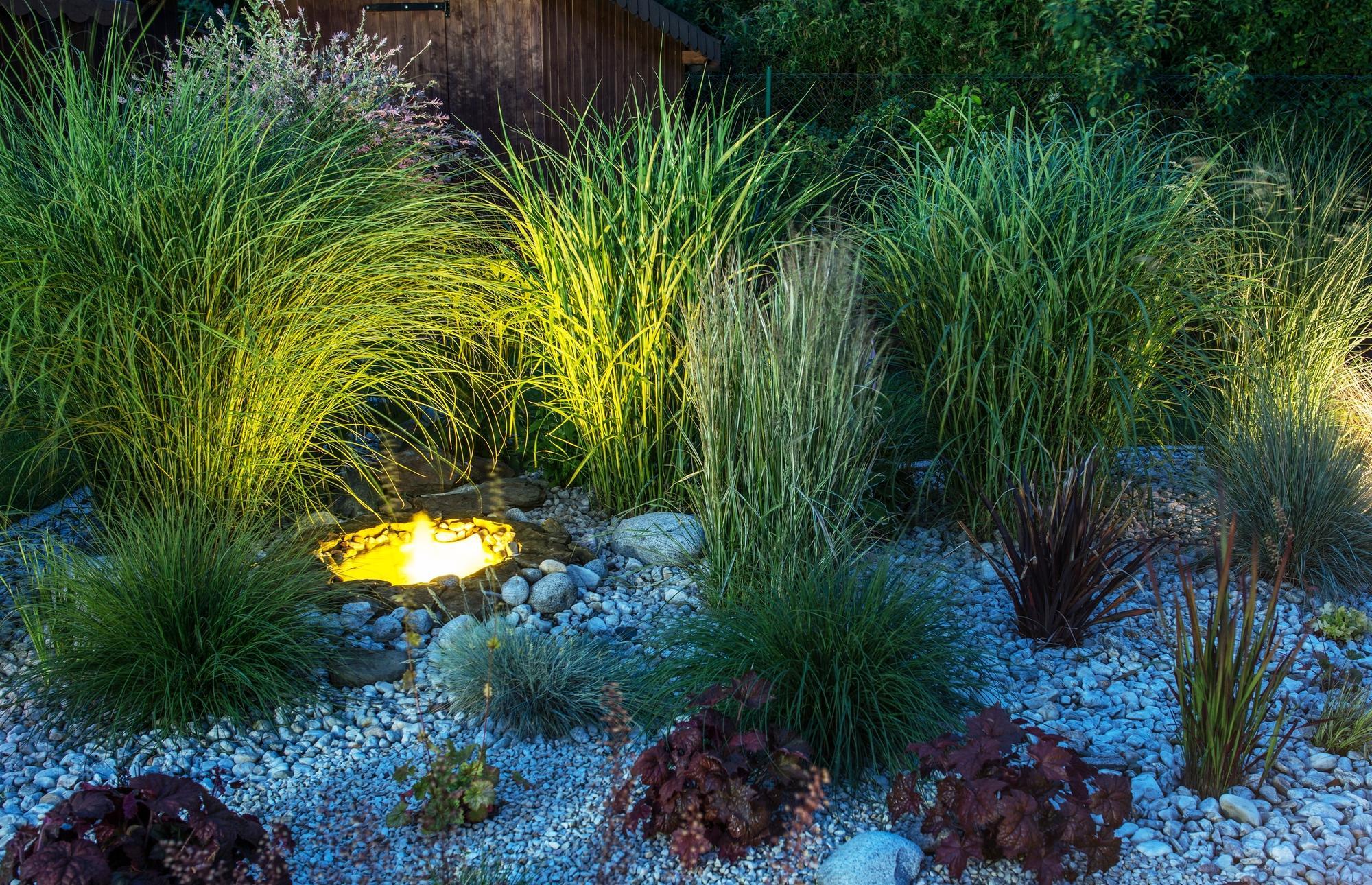 Certified Backyard Garden illumination